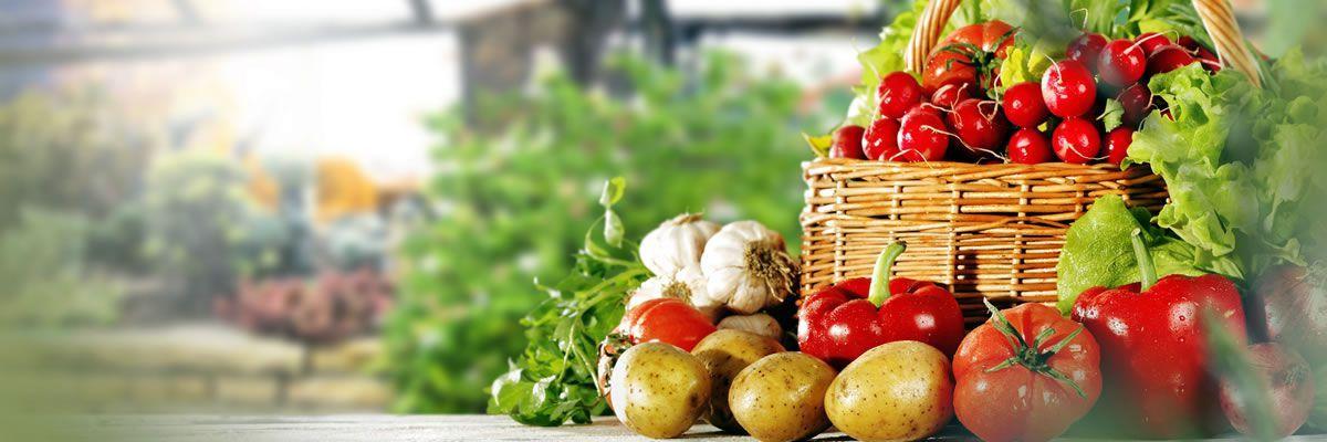Praxis für Ernährungstherapie in Lingen